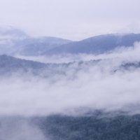 Туман :: Георгий Морозов