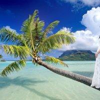 """Невеста - это всегда """"Неземная красота!"""" :: Райская птица Бородина"""
