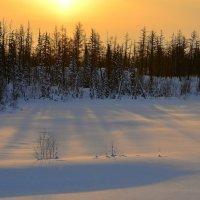 Зима... :: Витас Бенета