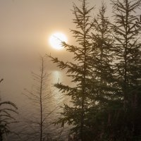 Туманный рассвет :: Сергей Сол