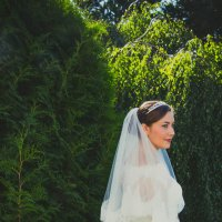 wedding :: Александр Цапликов