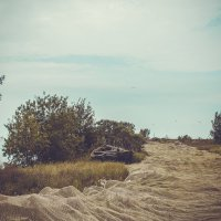 На Чудском озере :: виктория иванова