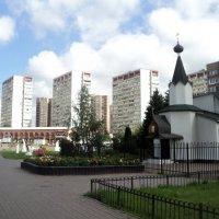 Топ, топ по подмосковному  городу Дзержинский. :: Ольга Кривых