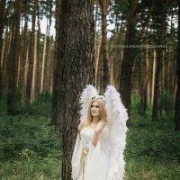 Ангел :: Юлия Холодная