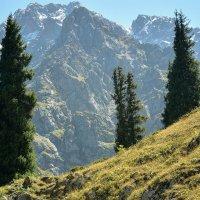 горы в полдень :: Горный турист Иван Иванов