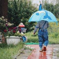 Подожди-дожди-дожди :: Анастасия Красовская