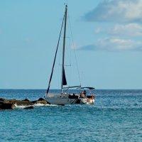 Прогулка по Атлантике. :: Paparazzi