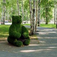Мишка на детской площадке :: Михаил Рехметов