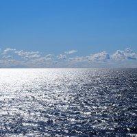 Финский залив... :: Ljudmila Korotkova