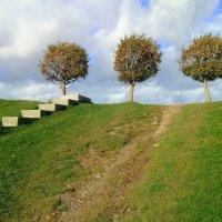 Просто три дерева, но в них такая сила! :: Viktoria Petrova