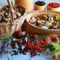 Осень - припасиха... :: Galina S*
