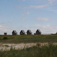 У солёного озера Мормышино. :: Олег Афанасьевич Сергеев