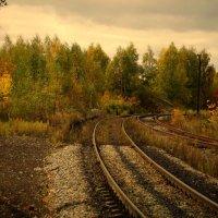 осень железной дороге :: Сергей Кочнев