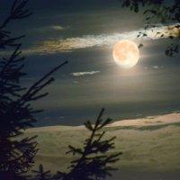 неужели луна получилась? :: Наталия П