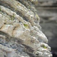 Камни :: Александр