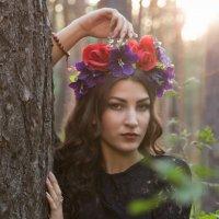 Очарование лета :: Евгений Евдокимов