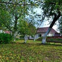 Старый сад :: Леонид Железнов