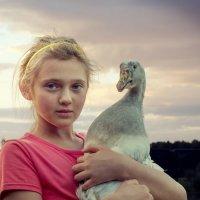 Девочка с гусем. :: Валерий Изотов
