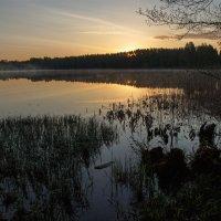 Рассвет на озере Светлояр :: Yury Mironov