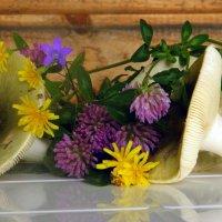 Сыроежки и полевые цветы... :: Елена