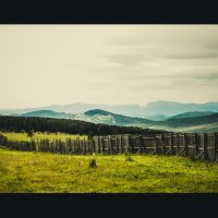 Перевал Семинский республика Горный Алтай :: Юлия Fox