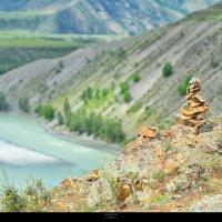 долина слияния рек Чуя и Катунь, Горный Алтай :: Юлия Fox(Ziryanova)