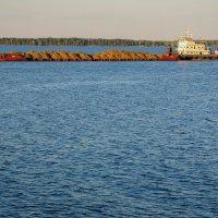 Река Волга. Баржа перевозящая песок. :: Сергей Тагиров