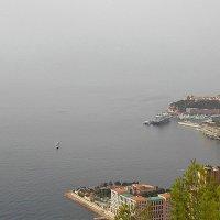 Монако :: Tata Wolf