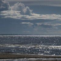Ласковое море :: shvlad