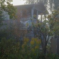 Туман :: Владимир Пименков