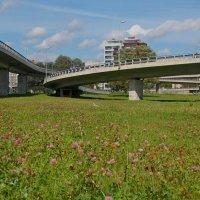 Южный мост в Риге :: Teresa Valaine