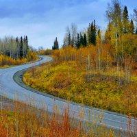 Поздняя осень в Сибири :: Тарун Дас