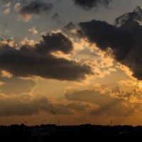 Закат 3 июня 2016 :: Михаил Аленин