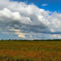 Про облака :: Милешкин Владимир Алексеевич