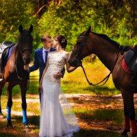 Прогулка с лошадьми :: Анна Удальцова