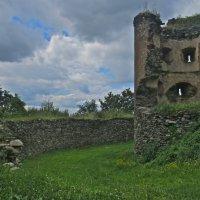 руины старого замка,Теплице, Чехия :: Елена