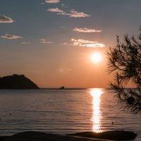 Утро на море. Крым. :: Ольга Воронина