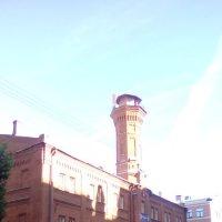 Здание 19 века на Петроградской стороне. (Санкт-Петербург). :: Светлана Калмыкова