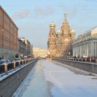 Каналы Санкт-Петербурга. Вид на Храм Спаса-на-крови :: Виктор Козусь