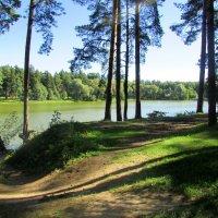 У озера :: irina