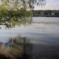 Донской пейзаж, август :: Леонид