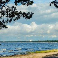 На Финском заливе 4 :: Виталий