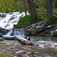 один из ручьев у подножья Софийских водопадов. (Архыз) :: Евгений Ромащенко