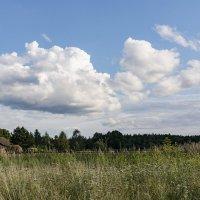 вид на небо :: Галина Кубарева
