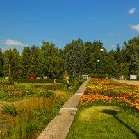 Ботанический сад СО РАН :: Дима Пискунов