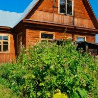 домик в деревне :: Света Кондрашова