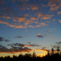 Закатные облака :: Елена Перевозникова