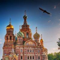 Храм Спаса-на-Крови(Санкт-Петербург) :: Александр Лебедев