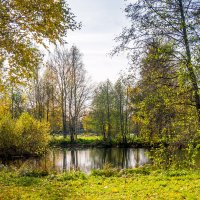 На берегу озера Разлив 4 :: Виталий