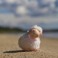На пляже.... :: Денис Антонов